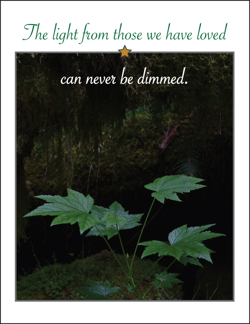 Gold Star - Light cannot be dimmed - military sympathy greeting card - 2MyHero
