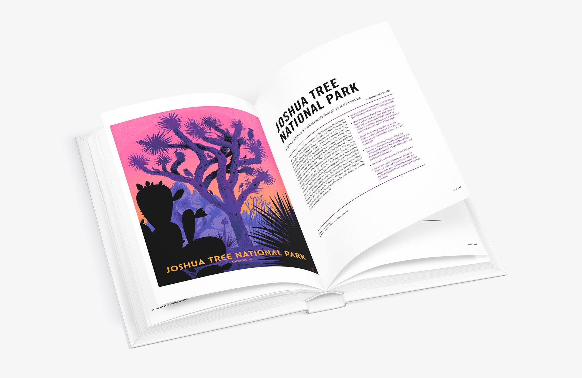 Art of the National Parks by Fifty-Nine Parks book Joshua Tree