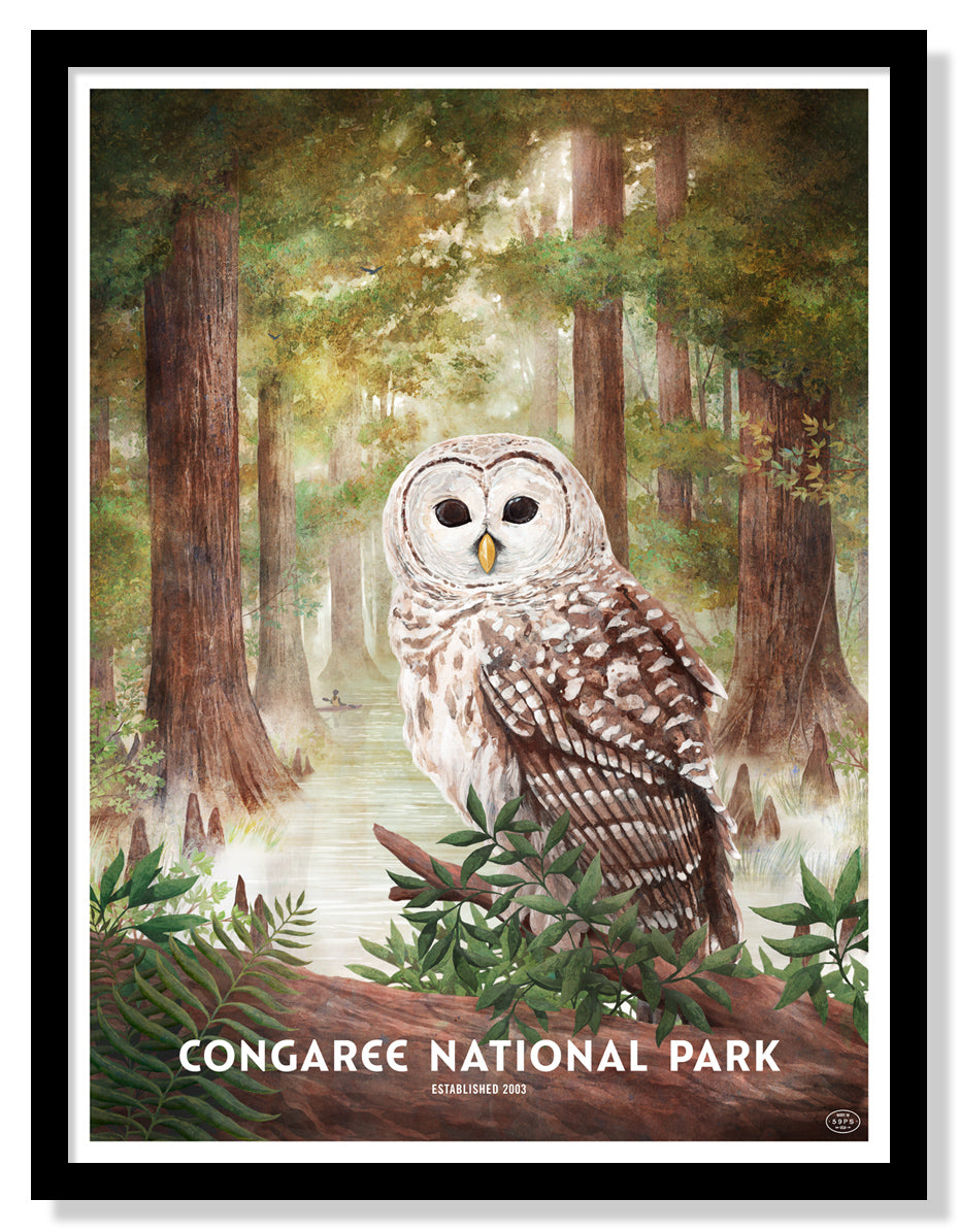 Congaree National Park Poster
