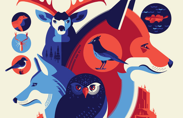 Iconic Wildlife of Yosemite National Park Poster