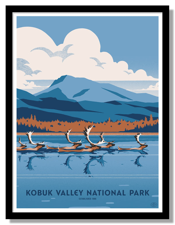 Kobuk Valley National Park Poster