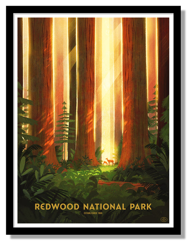 Redwood National Park Poster (Doe)