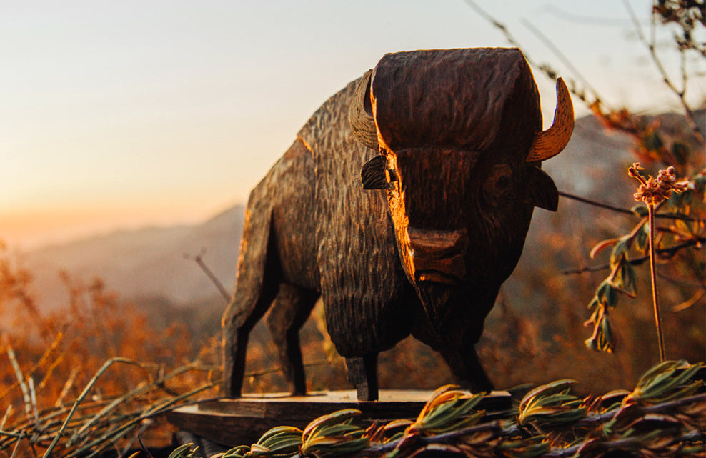 Whittle Bison Carving