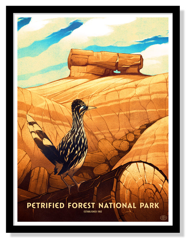 Petrified Forest National Park Poster (Large Timed Edition)