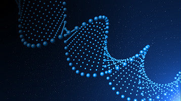 After Effects DNA Animation Background Loop