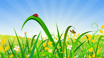 Landscape Nature Animation with Ladybird and Butterfly