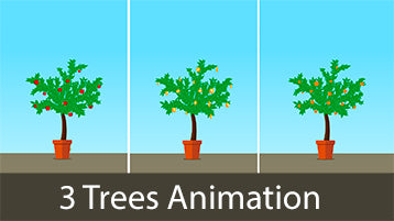 Money Tree Animations