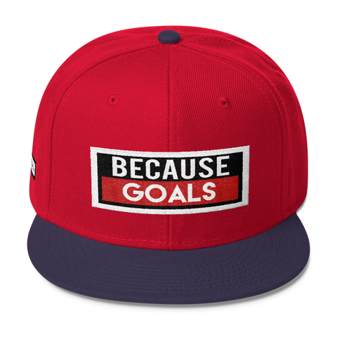 BecauseGoals SnapBack Hat