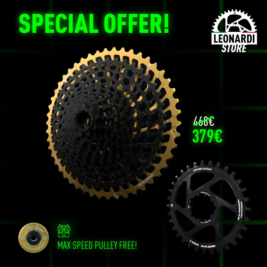 SPECIAL OFFER CASSETTE + GECKO CHAINRING Leonardi Store