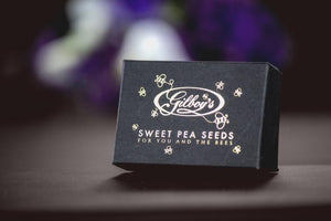 sweet pea seeds to grow as a thank you to the bees