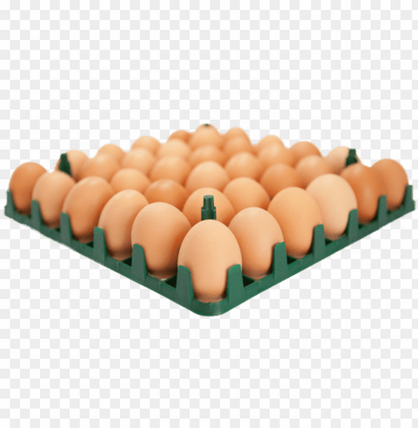 Grocery Delivery London - Medium Fresh Eggs Tray 15pc same day delivery