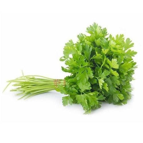 Grocery Delivery London - Coriander Leaves Bunch same day delivery