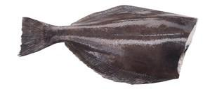 Grocemania | Halibut 1KG | Online Grocery Delivery