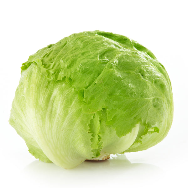 Grocery Delivery London - Iceberg Lettuce 1pk same day delivery