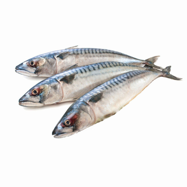 Grocery Delivery London - Mackrel 1KG same day delivery
