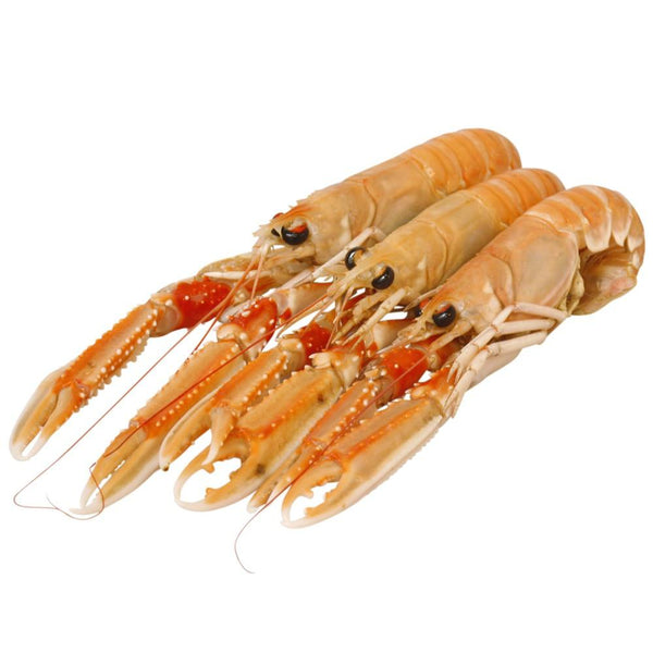 Grocemania Grocery Delivery London| King Prawns Single