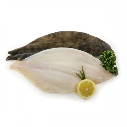 Grocemania | Plaice Fillet 1KG | Online Grocery Delivery