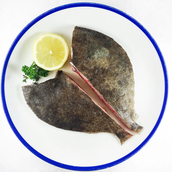 Grocery Delivery London - Turbot 1KG same day delivery