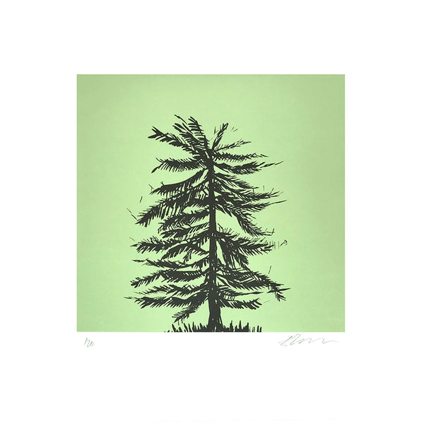 Fir Tree Screen Print
