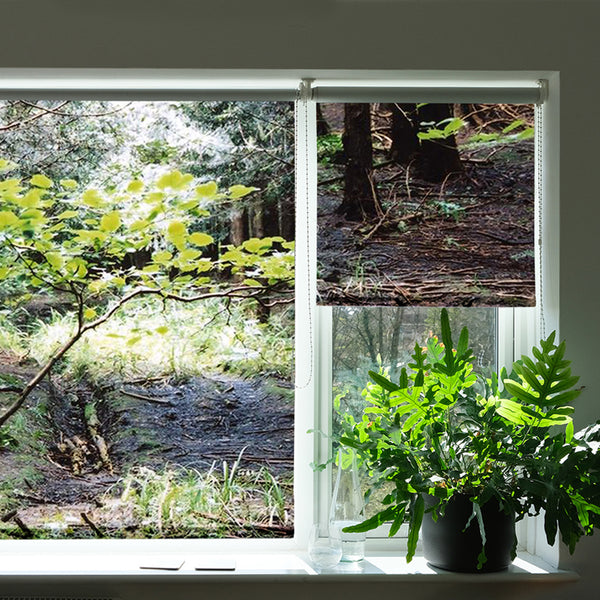 Forest Clearing roller blind