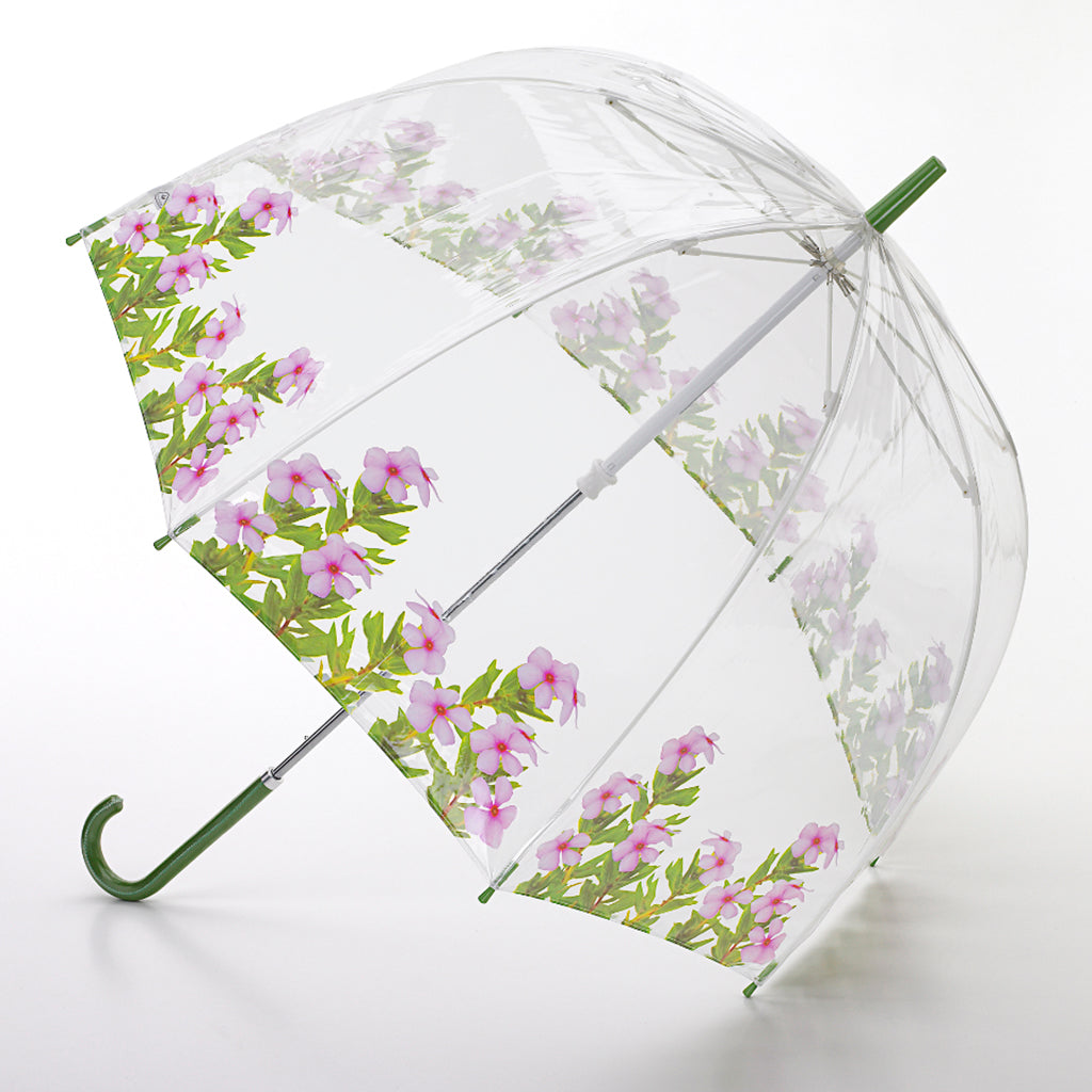 Pinky bird cage umbrella