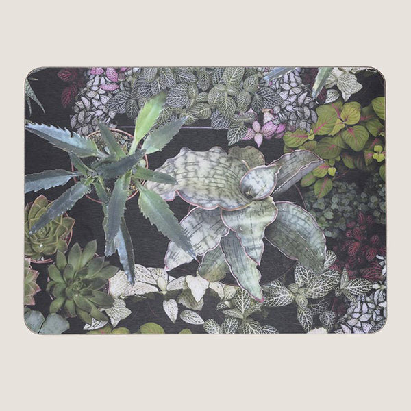 Surreal Succulents single placemat