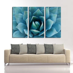 Blue Agave Flower Canvas Print Ready to Hang 3 Panels Stretched on Deep 3cm Frame - MC46-Wall Art Canvas-Extra Large Wall Art Canvas Print-Extra Large Wall Art Canvas Print