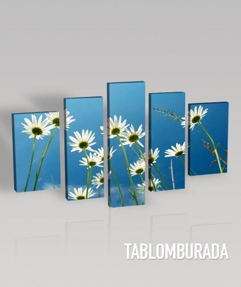 Large CANVAS Wall ART - White Daisy with Sky Background Photo Print on Canvas + Canvas Art Printing + Ready to Hang + 5 Panel-Wall Art Canvas-Extra Large Wall Art Canvas Print-Extra Large Wall Art Canvas Print