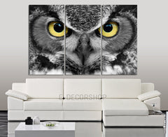 LArge Wall Art 3 Panel Canvas Print Great Owl Eye | Captive Bird Eye Canvas Painting | Triptych Canvas Painting | Owl Wall Art-Wall Art Canvas-Extra Large Wall Art Canvas Print-Extra Large Wall Art Canvas Print