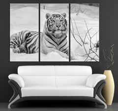 Large Wall Art Siberian White Tiger 3 Panel Canvas Print | Tiger in Snow Canvas Painting | Tiger Art Canvas Print | Tiger Wall Art - MC165-Wall Art Canvas-Extra Large Wall Art Canvas Print-Extra Large Wall Art Canvas Print