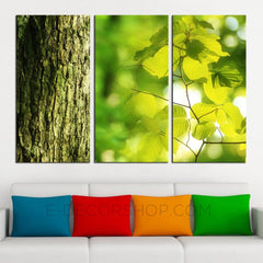 Tree Green Leaves Canvas ART Print Ready to Hang 3 Panels Stretched on Deep 3cm Frame-Wall Art Canvas-Extra Large Wall Art Canvas Print-Extra Large Wall Art Canvas Print