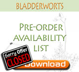 Pre-orders for bladderworts are now closed - See what's available in store