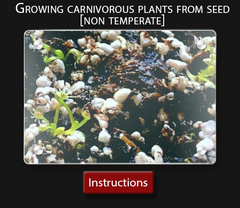 Carnivorous plant instruction sheet  How to grow a venus fly trap from seed