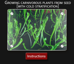 Carnivorous plant instruction sheet  How to grow sarracenia from seed with cold stratification