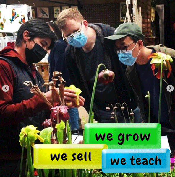 We grow we sell we teach all things carnivorous