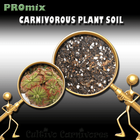 PRE-MIXED GROWING MEDIA:  PROmix for Sundews (Drosera) for sale | Buy carnivorous plants and seeds online @ South Africa's leading online plant nursery, Cultivo Carnivores