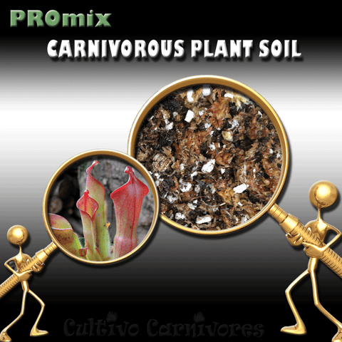 PRE-MIXED GROWING MEDIA:  PROmix for Sun Pitchers (Heliamphora) for sale | Buy carnivorous plants and seeds online @ South Africa's leading online plant nursery, Cultivo Carnivores