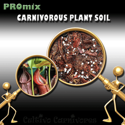 PRE-MIXED GROWING MEDIA:  PROmix for Tropical Pitcher Plants (Nepenthes) for sale | Buy carnivorous plants and seeds online @ South Africa's leading online plant nursery, Cultivo Carnivores