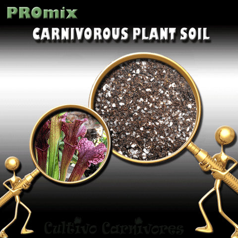 PRE-MIXED GROWING MEDIA:  PROmix for American Trumpet Pitcher Plants (Sarracenia) for sale | Buy carnivorous plants and seeds online @ South Africa's leading online plant nursery, Cultivo Carnivores