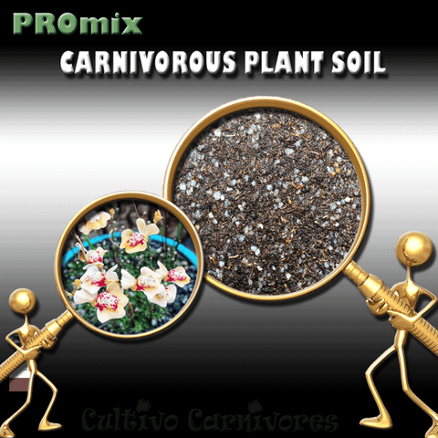 PRE-MIXED GROWING MEDIA:  PROmix for Terrestrial Bladderworts (Utricularia) for sale | Buy carnivorous plants and seeds online @ South Africa's leading online plant nursery, Cultivo Carnivores