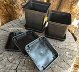 Square trays for plastic plant pots for sale * Buy online now @ www.cultivocarnivores.com * South Africa