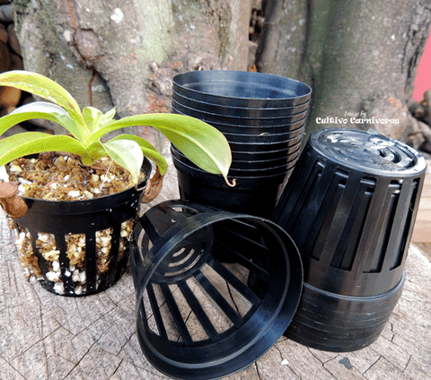 POTS & PLANTERS: Net Pots (Various Sizes) for sale | Buy carnivorous plants and seeds online @ South Africa's leading online plant nursery, Cultivo Carnivores