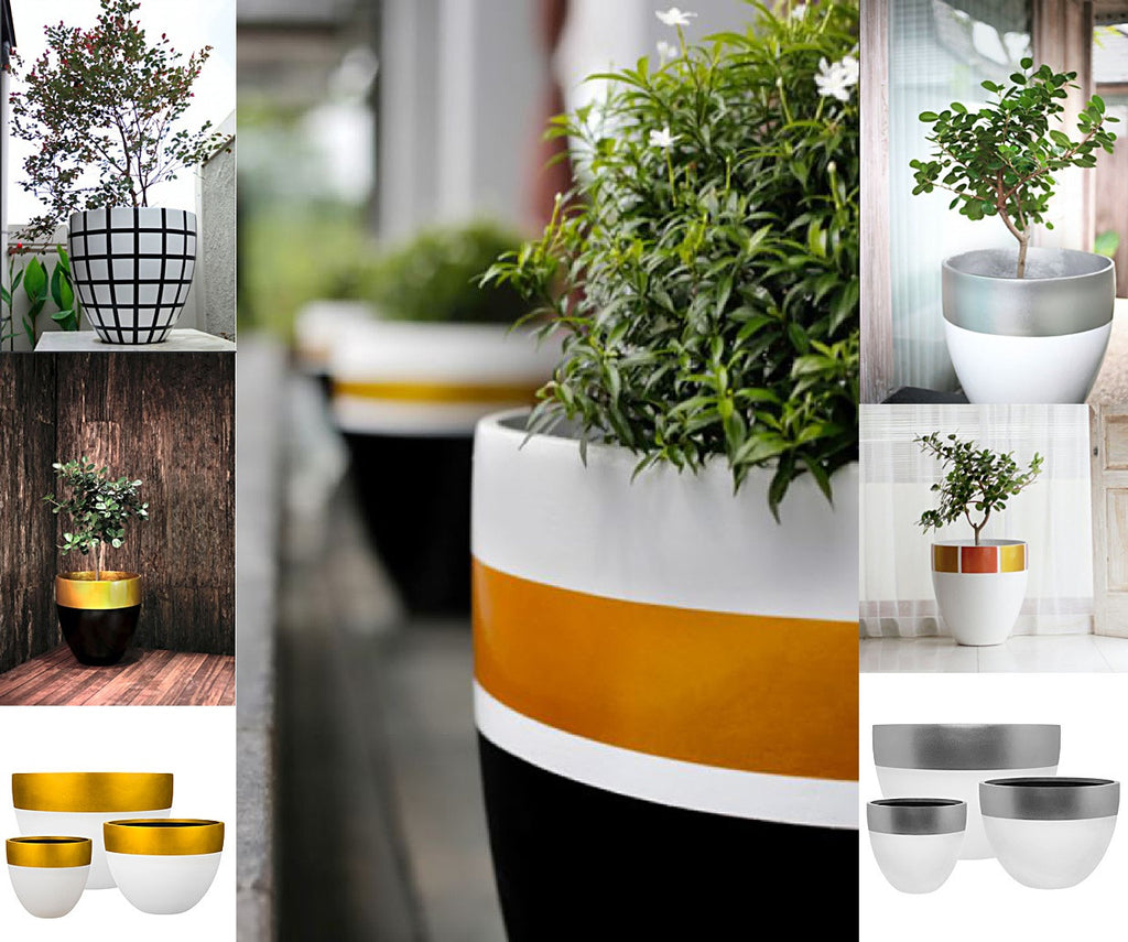 New Pots for Old, Gardens and Terraces in need of a makeover by Spa Living