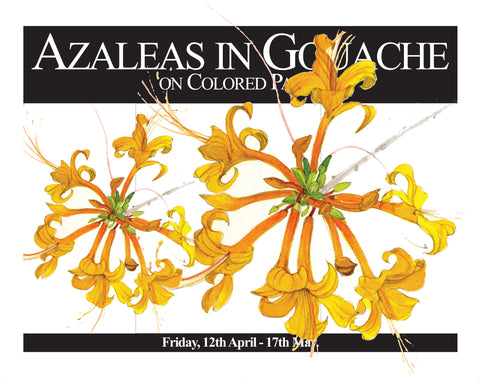 Botanical Art: Painting Azaleas in Gouache