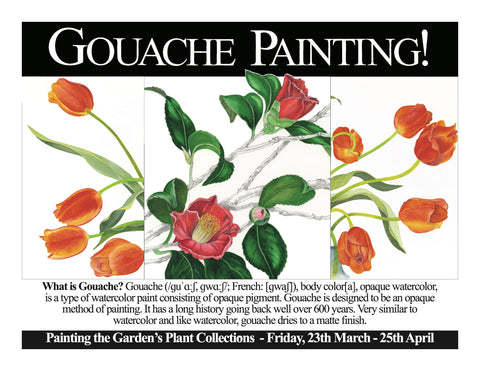 Painting the Gardens's Collections in Gouache
