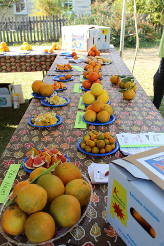 Citrus Day Bus Trip - November 17th (Members $50, Non-Members $65)