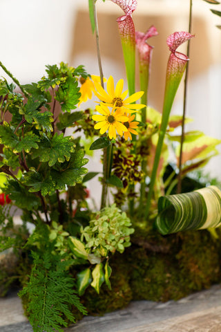 From the Gardens II - Floral Arranging with Dennis Harris