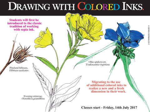 Botanical Art Class: Drawing with Colored Inks
