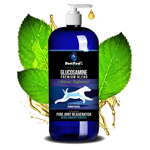 Premium Dream Glucosamine Unflavored