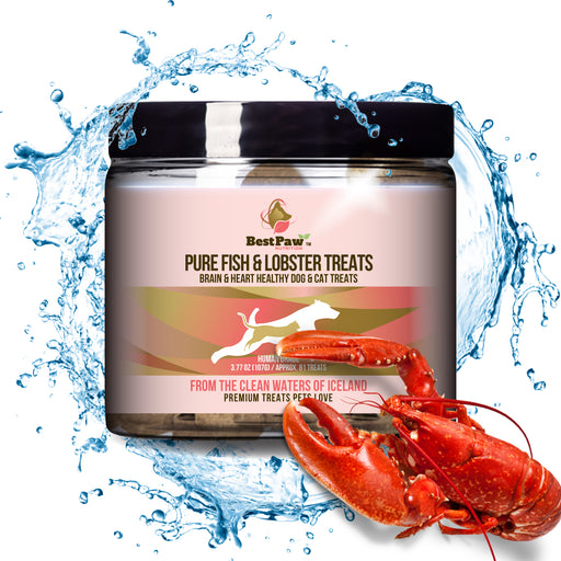 Pure Whitefish & Lobster + Kelp Treat Chips